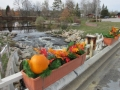 Fall planter on Business Loop bridge